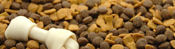 σκυλοτροφή- τροφή για σκύλους online pet shop pet-astero.gr