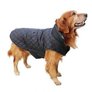 Ρούχα για σκύλους online pet shop pet-astero