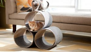 Παιχνίδια για γάτες σωλήνες