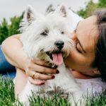 Άνθρωποι και Σκύλοι: Μια σχέση ανιδιοτελούς αγάπης